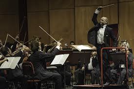 Budapest Festival Orchestra -Ivan Fischer